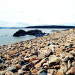 Stone Cobbled Beaches Along the Schoodic Scenic Byway