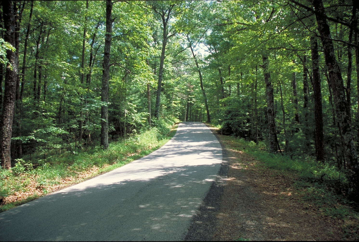 Red River Gorge Scenic Byway Photos America 39 S Byways