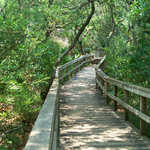 Walkway Along Fort Matanzas Trail