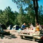 Rose Canyon Campground