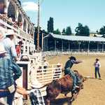 Border Days Rodeo, Grangeville