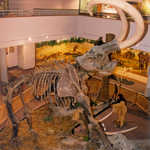 The Huntington Mammoth