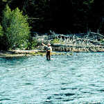 Fisherman in Clarks Fork  of Yellowstone River