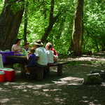 Family Picnicking at DeWitt Picnic Area