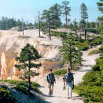 Hikers on the Rim Trail at Bryce Canyon
