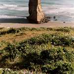 Pillar at Cape Blanco