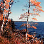 Fall Colors Along the North Shore Scenic Drive