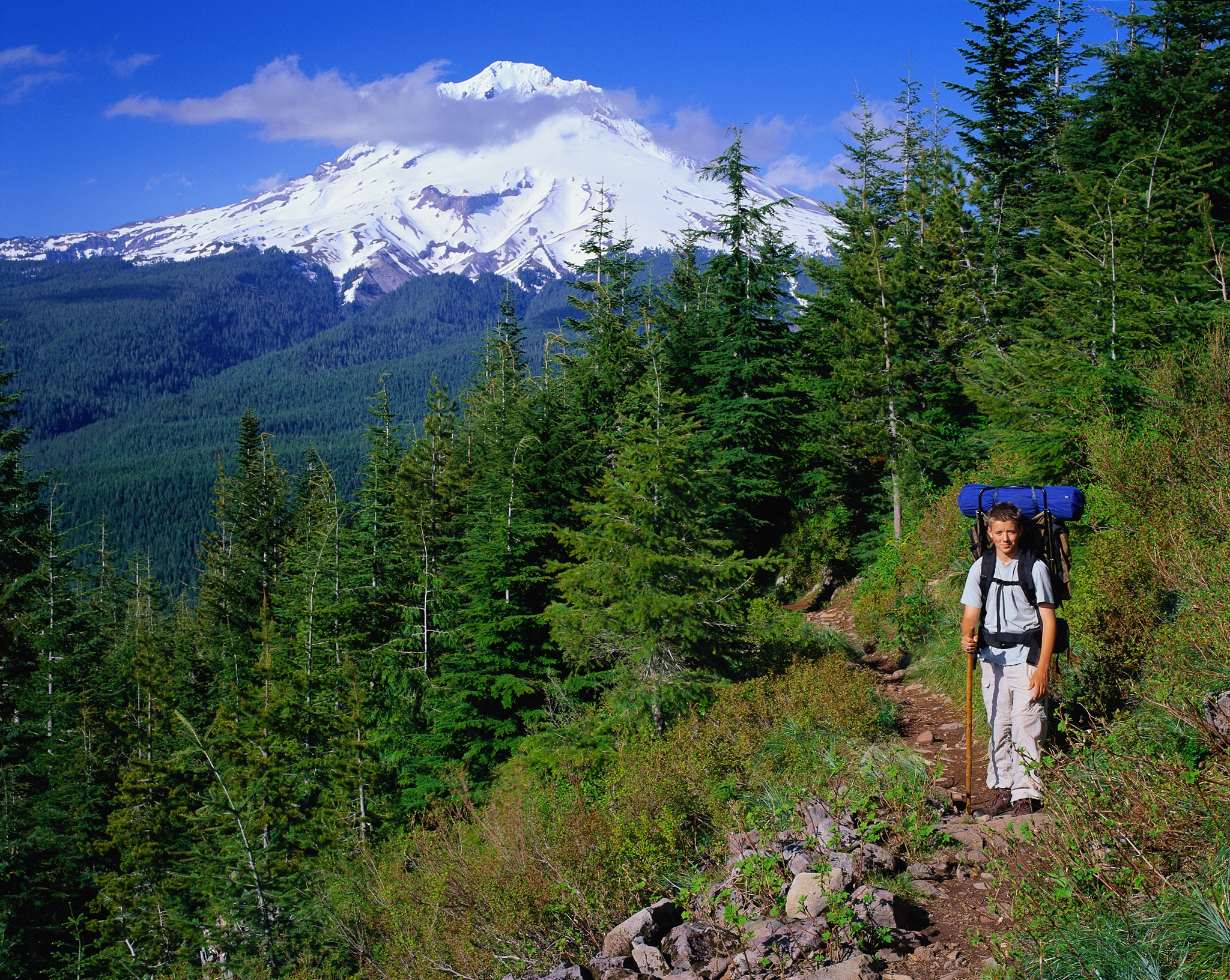 Photo #62735: Hiking in Mt. Hood National Forest | America's Byways