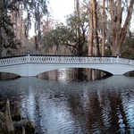 The Long White Bridge at Magnolia Gardens
