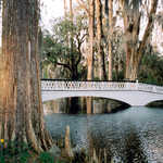 The Long White Bridge at Magnolia Plantation
