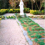 The Biblical Garden at Magnolia Plantation