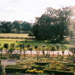 The Grounds of Magnolia Plantation