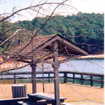A Picnic Area at the J. Strom Thurmond Lake Recreation Area