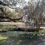 """The Street"" at Magnolia Plantation"