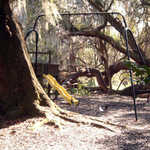 Playground at Magnolia Gardens