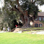 Visitors by the House Museum at Middleton Place