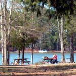 Picnicking at Hamilton Branch State Recreation Area