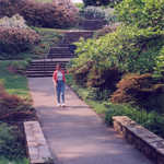 Visitor Strolls the Pinetum Path at Winterthur
