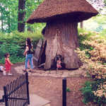 Enchanted Woods' Tulip Tree House at Winterthur
