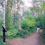 Walking the Superior Hiking Trail
