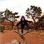 Fun in a Tree at Capitol Reef National Park