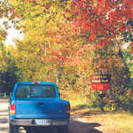 Fall Color Tour at the Chippewa National Forest