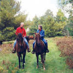 Horseback Riding on the Edge of the Wilderness