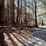 The Limberlost Trail