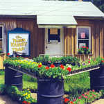The Tender Tourist Trap in Marcell, Minnesota