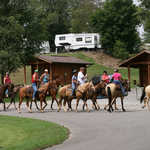 Camping with Horses at Wranglers Campground