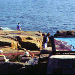 Interpretive Signs at Schoodic Point