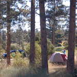 Camping at Greendale in Flaming Gorge NRA