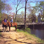 Horseback Riding Along the Towpath of the Delaware and Raritan Canal