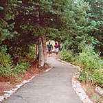 Visitors Enjoying a Trail on Nebo Loop