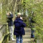 Birders at Magee Trail