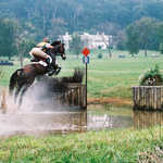 Equestrian Event at Morven Park