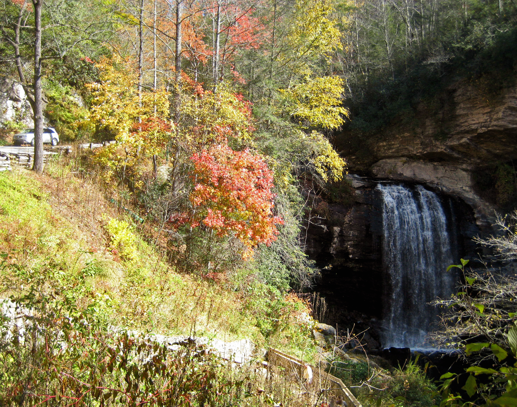 Forest Heritage National Scenic Byway Photos America 39 S