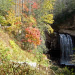 Colorful Autumn Leaves at Looking Glass Falls