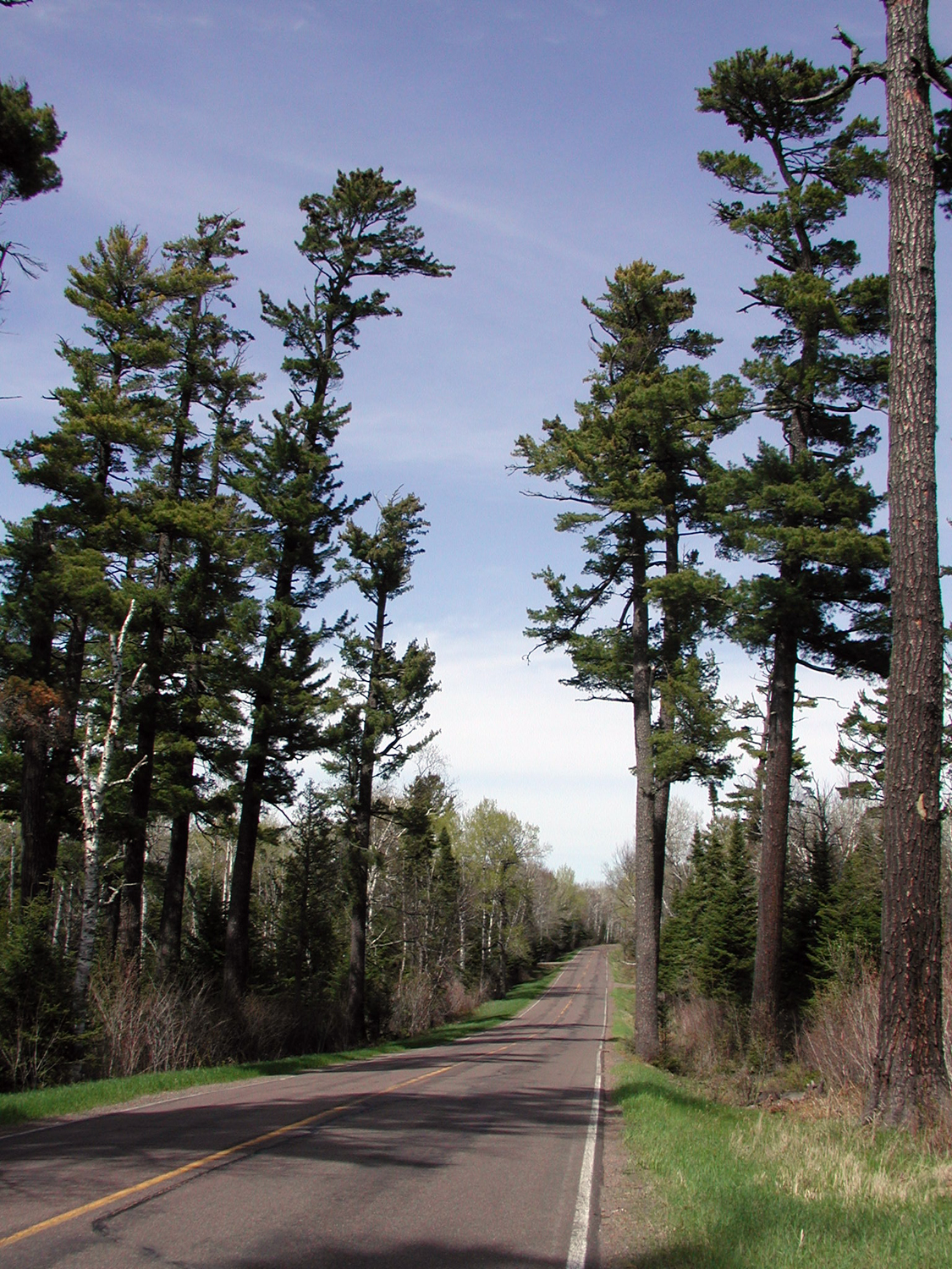 Gunflint Trail Scenic Byway Photos America S Byways