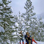 Cross-Country Fun in Rocky Mountain National Park