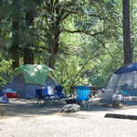 Camping at Rogue Elk County Park