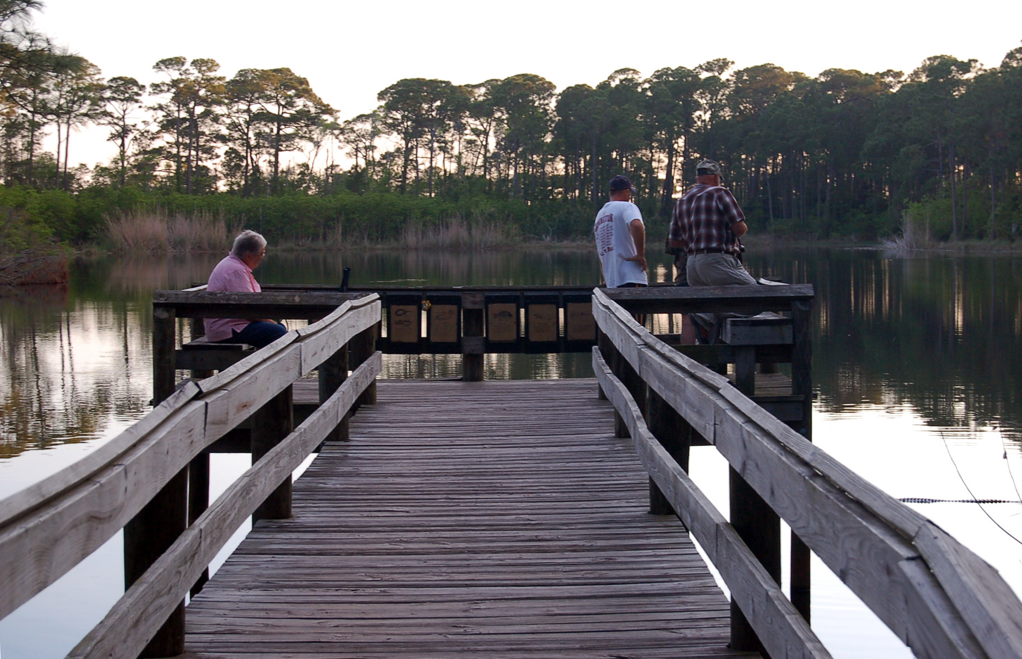 dauphin island black single men Dauphin island, al has a population either black or non-black, from the dartmouth atlas 120 men graduated from institutions in prichard city.