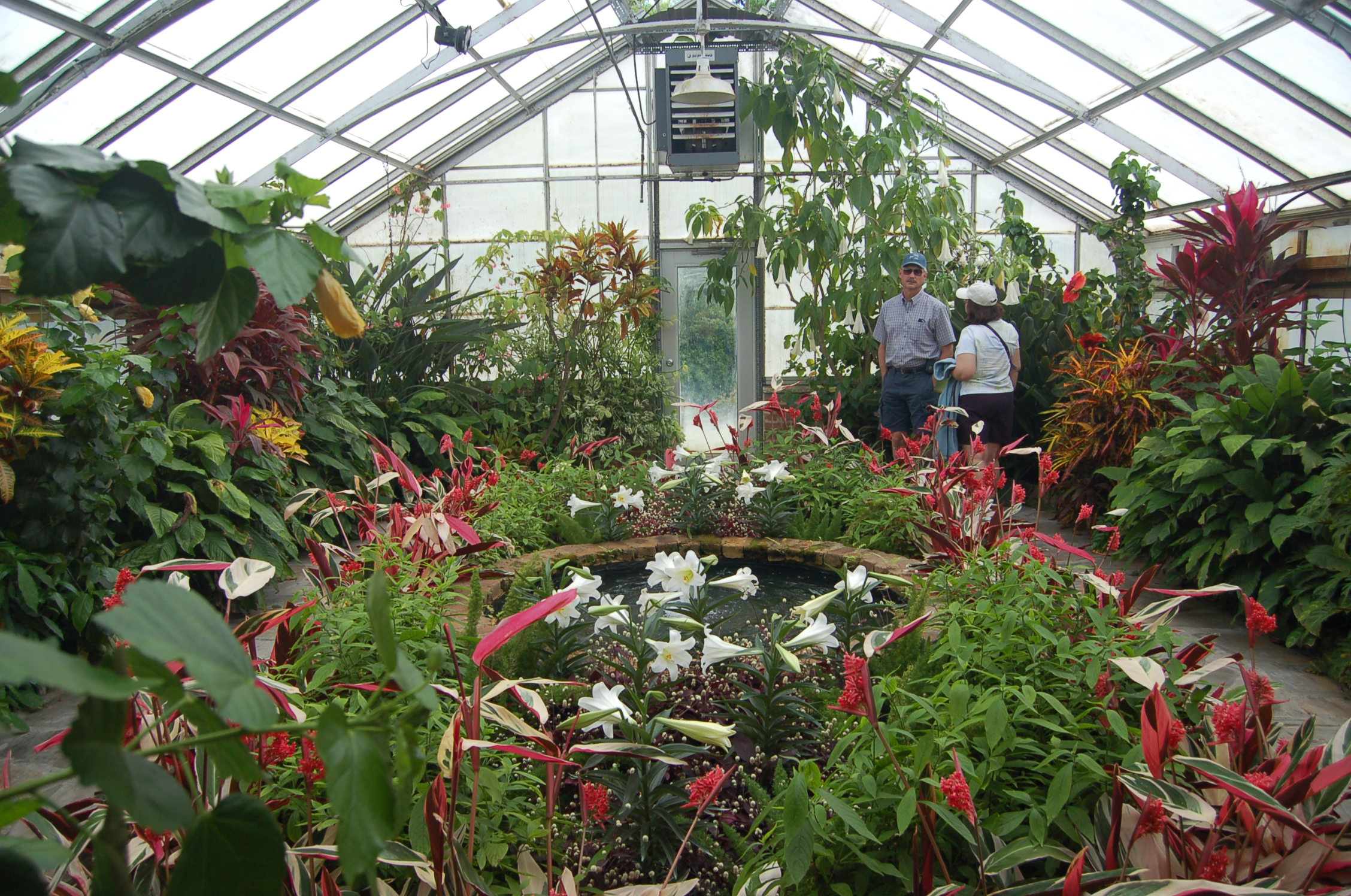 Photo 81660 Inside The Greenhouses At Bellingrath
