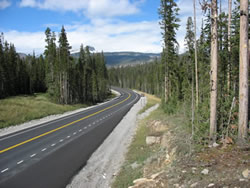 The road curves gently to the left through a corridor of evergreens with mountains in the background. Wider shoulders, added pullouts, increased parking areas, and access improvements have enhanced safety and mobility and improved visitor experience.