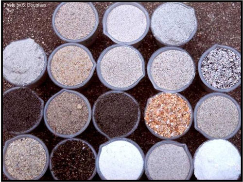 Figure 5.13. Examples of colors of US beach sands (from Douglass 2002)