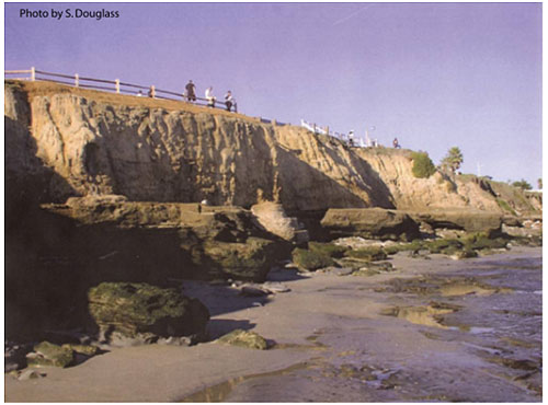 Figure 6.12. Concrete seawall designed to look like the natural rock formation built on an eroding sea cliff to protect a local road (East Cliff Drive, Santa Cruz, California).