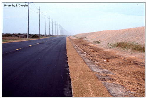 Figure 8.18. Artificial sand dune constructed seaward of a highway to protect the highway (North Carolina Highway 12)