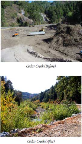 Before and After photos of the Cedar Creek re-vegetation project.