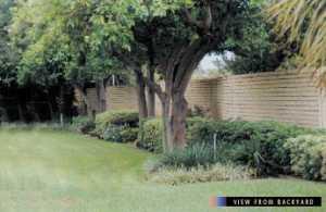 Backyard Landscaping Barriers Pdf
