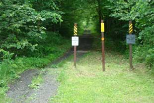 Photo of Bollards blocking access to a trail.
